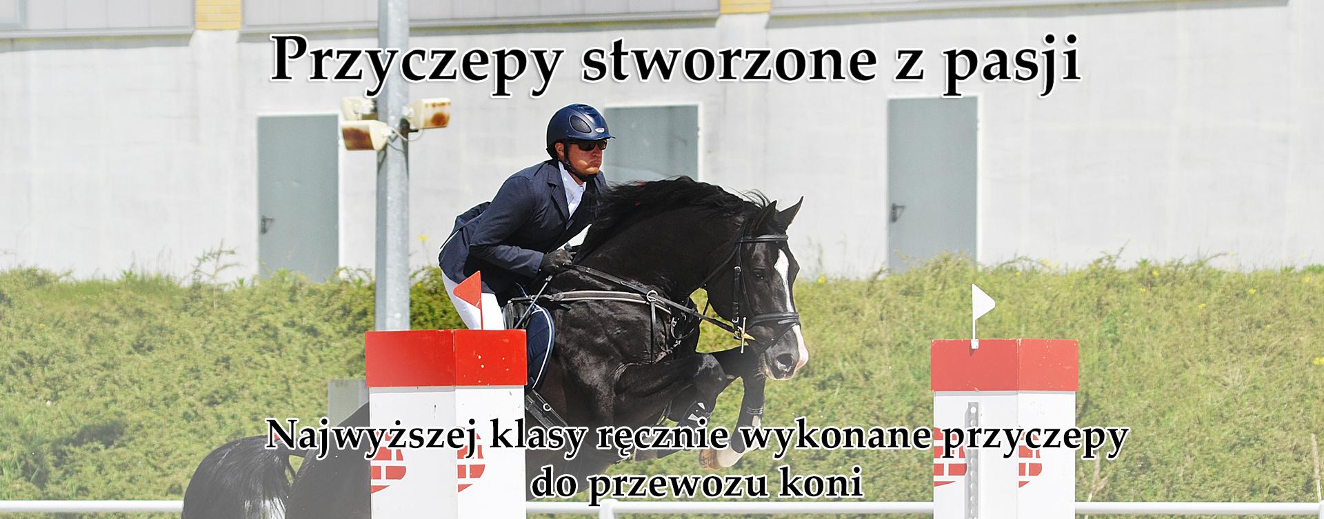 boeckmann – przyczepy dla koni